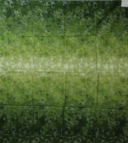 20079_60 プルメリアグラデーション